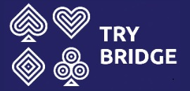 Try Bridge Website